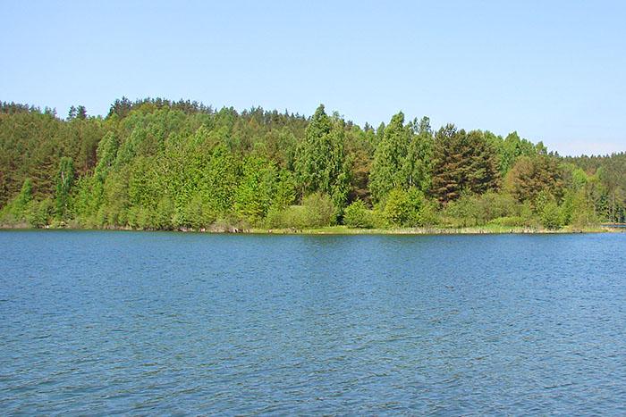 Jezioro Osuszyno (pod Kościerzyną)