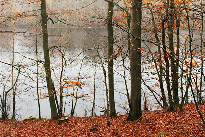 Jezioro Prusionki Wielkie i Prusionki Małe